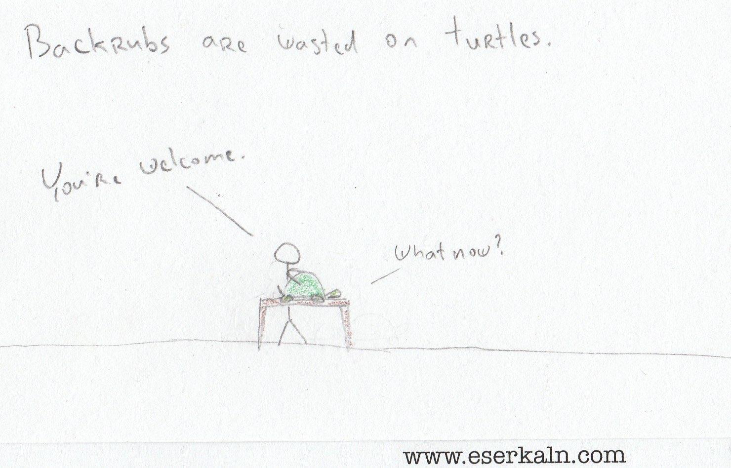 Turtle Backrubs