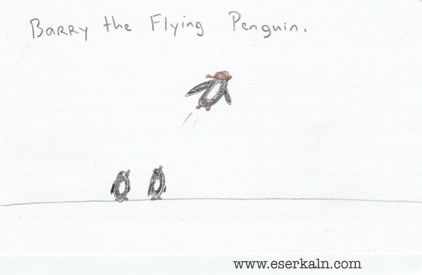 Barry the Flying Penguin